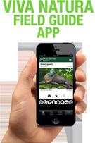 Viva Natura Field Guide App
